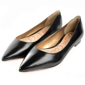 Sam Edelman Rae Pointed Toe Ballet Flat